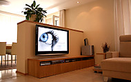 "Viera 50"" Full HD Plazma Panasonic (Molex)"